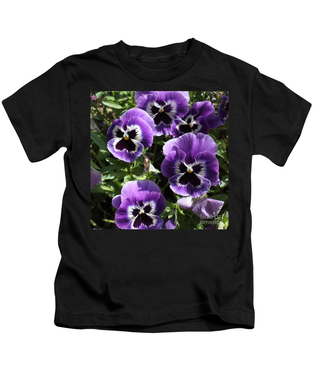 Pansy Kids T-Shirt featuring the photograph Purple Pansies Square by Carol Groenen