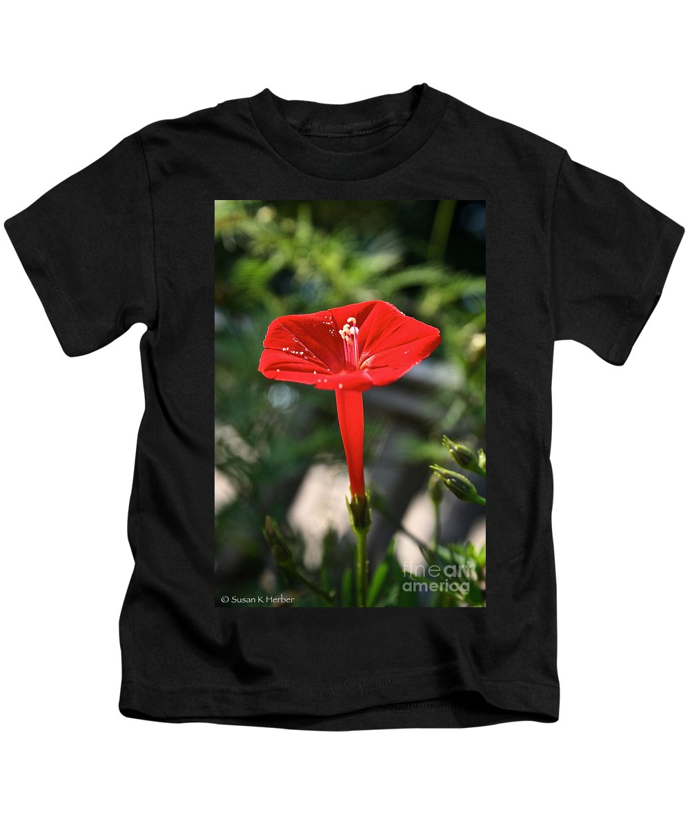 Outdoors Kids T-Shirt featuring the photograph Real Red by Susan Herber