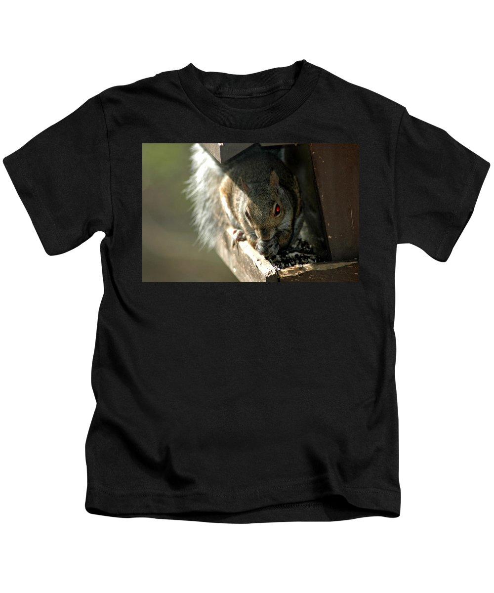Usa Kids T-Shirt featuring the photograph Red Eyed Demon Squirrel by LeeAnn McLaneGoetz McLaneGoetzStudioLLCcom