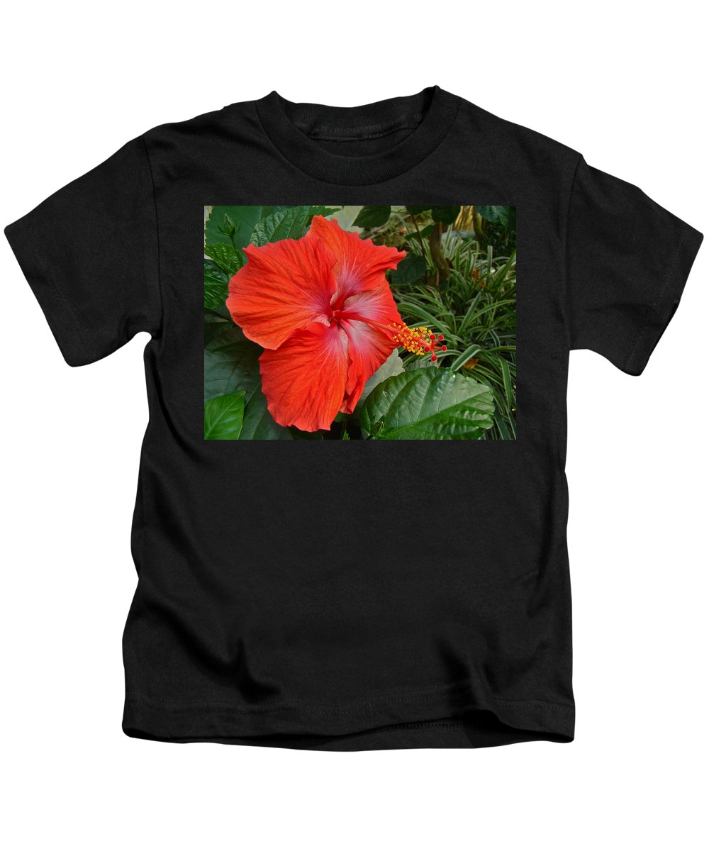 Hibiscus Kids T-Shirt featuring the photograph Red Hibiscus Flower by Mother Nature