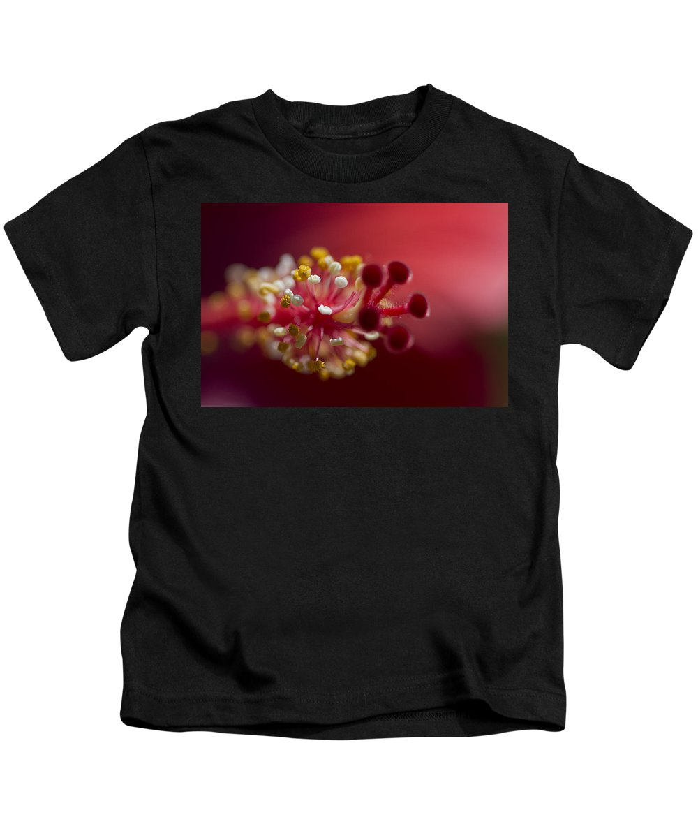 Malvaceae Kids T-Shirt featuring the photograph Showy Tropical Vibrant Red Hibiscus Pistil by Kathy Clark