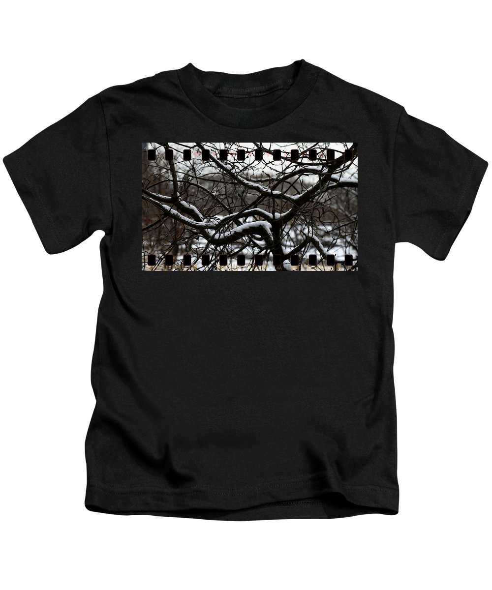 Winter Snow Branches Tree Film Print Border Kids T-Shirt featuring the photograph Snow On Branches by Alice Gipson