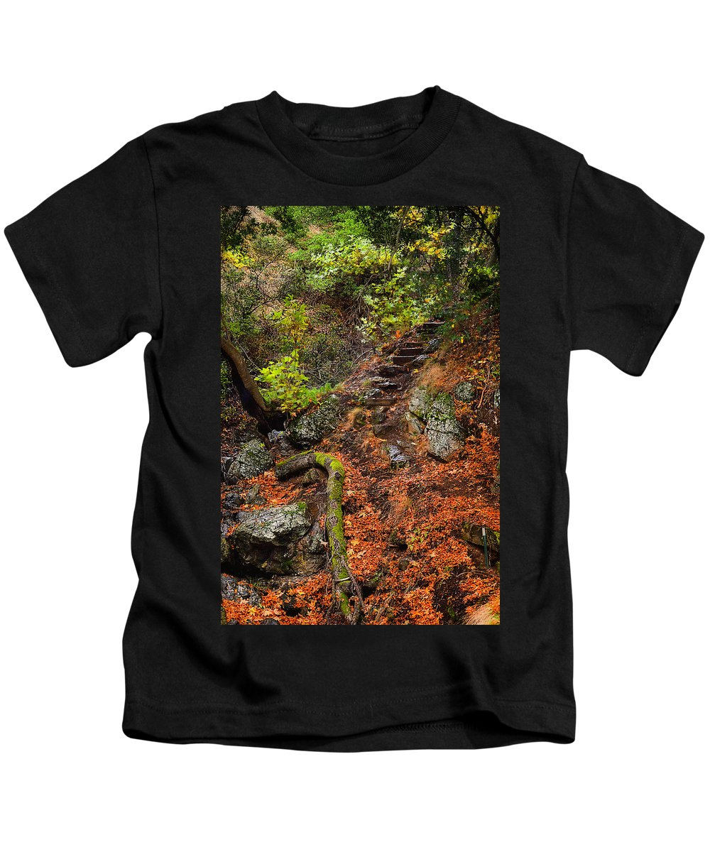 Sunol Kids T-Shirt featuring the photograph Stairway To The Sky by Karen W Meyer