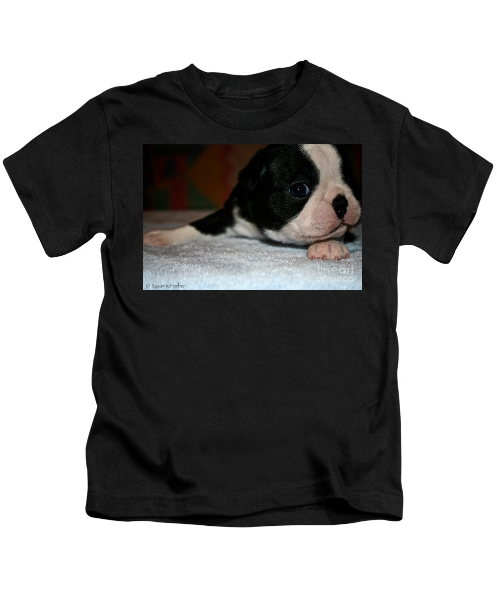Dog Kids T-Shirt featuring the photograph Stealing Hearts by Susan Herber
