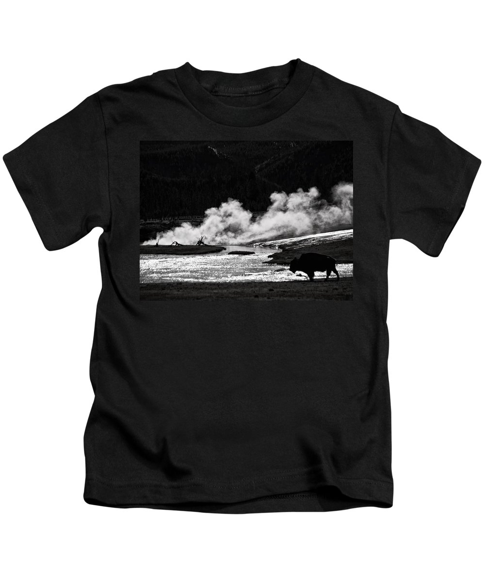 Bison Kids T-Shirt featuring the photograph Steaming Bison by Derek Holzapfel
