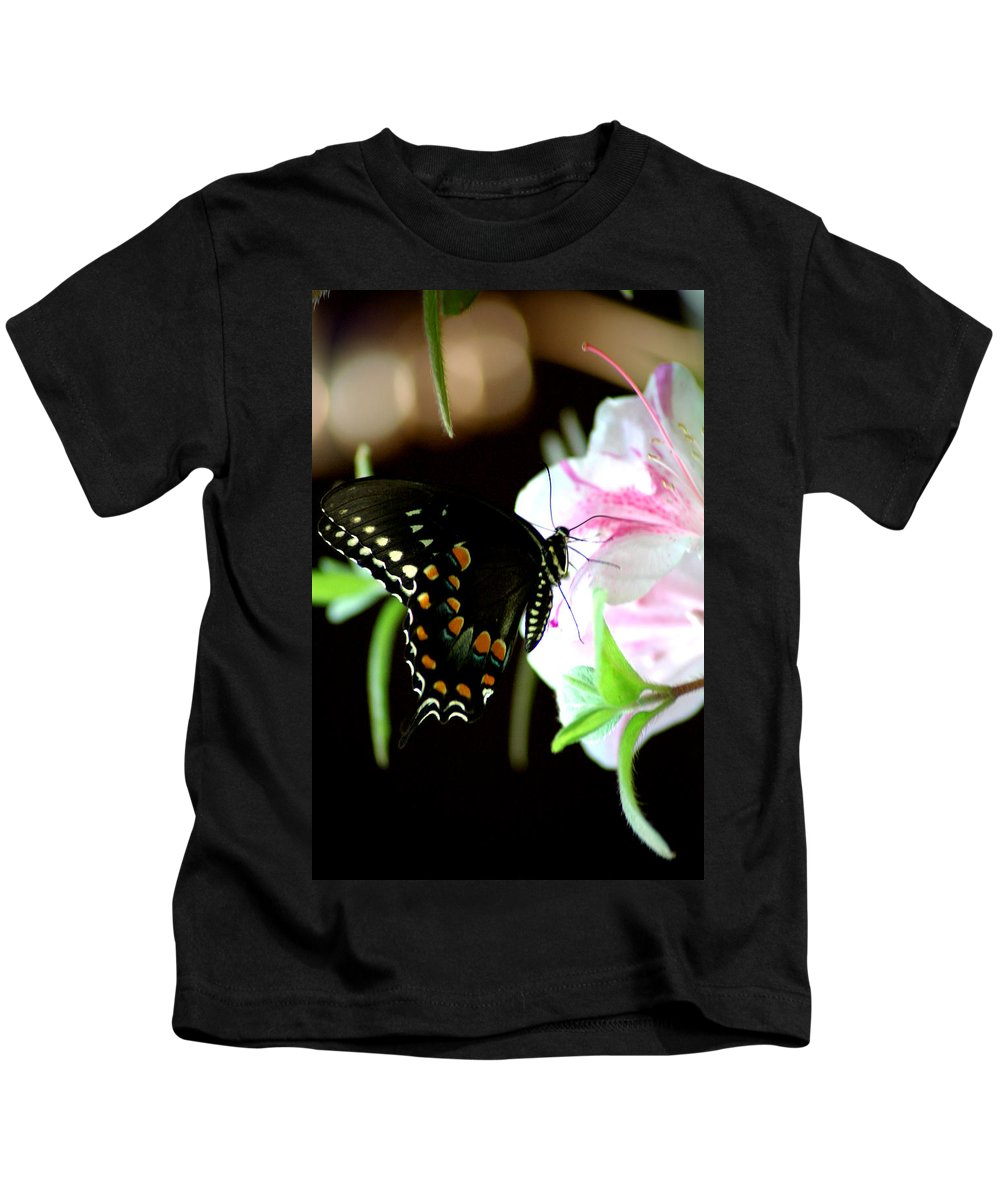 Swallowtail Kids T-Shirt featuring the photograph Swallowtail by David Weeks
