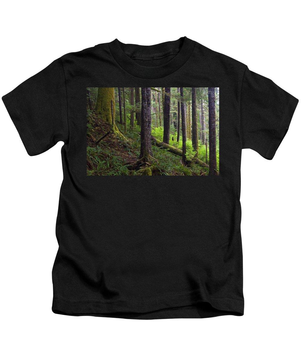 Carmanah Walbran Pp Kids T-Shirt featuring the photograph Temperate Rain Forest, Carmanah-walbran by Mike Grandmailson