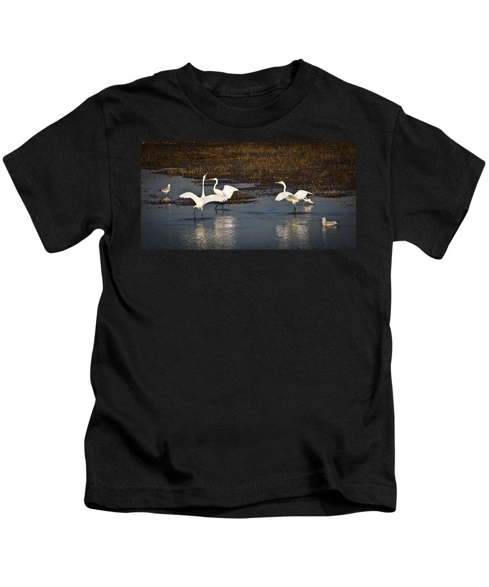 Birds Kids T-Shirt featuring the photograph The Egrets by Steve McKinzie
