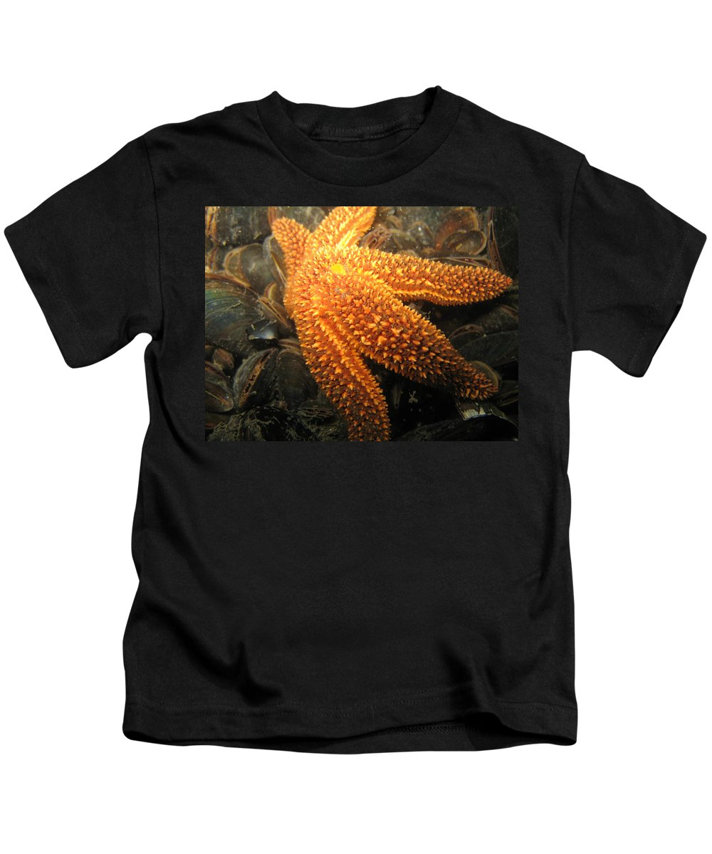 Star Kids T-Shirt featuring the photograph The Great Starfish by Paul Ward