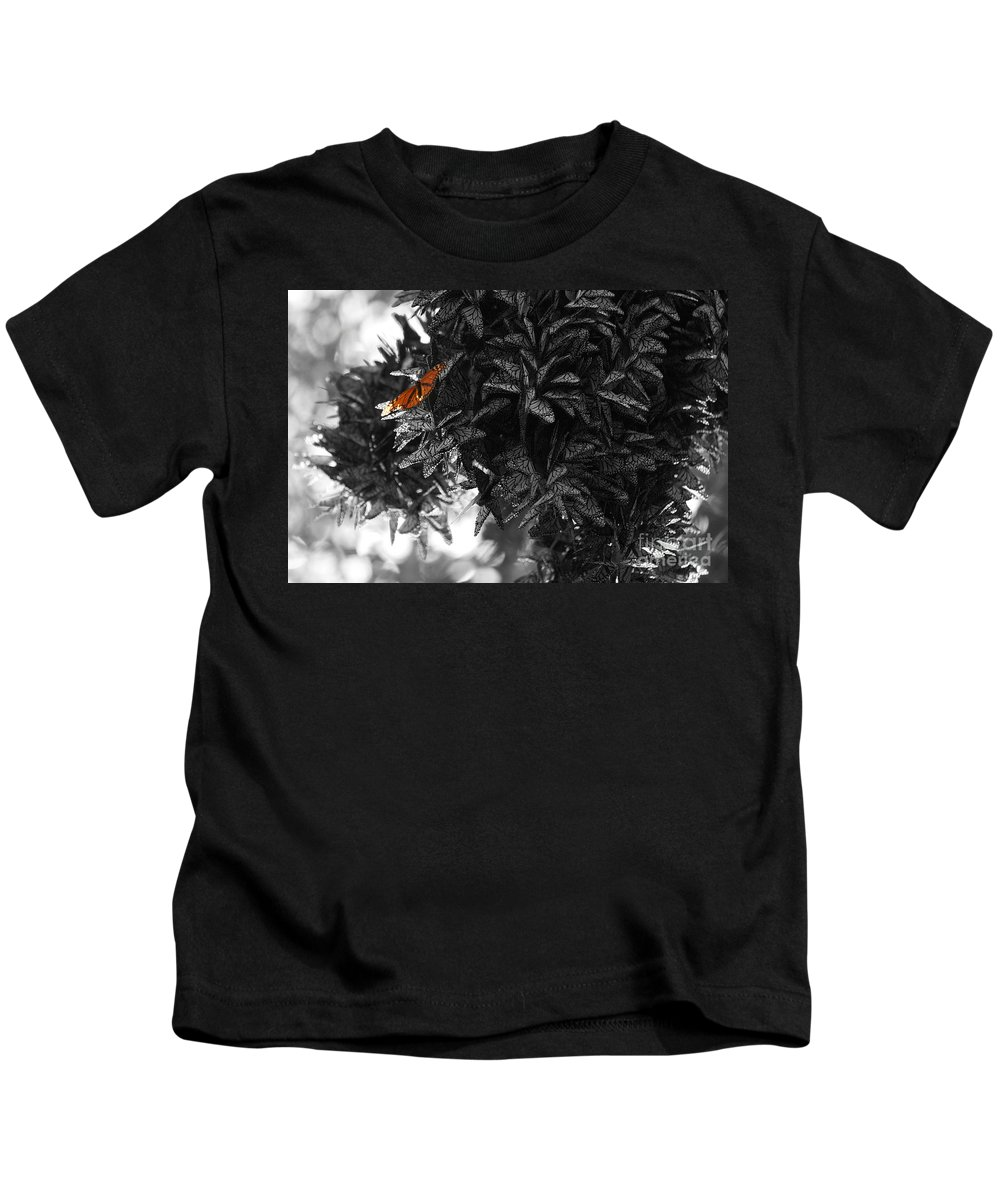 Butterfly Photographs Kids T-Shirt featuring the photograph The Monarch Stands Alone by Brooke Roby
