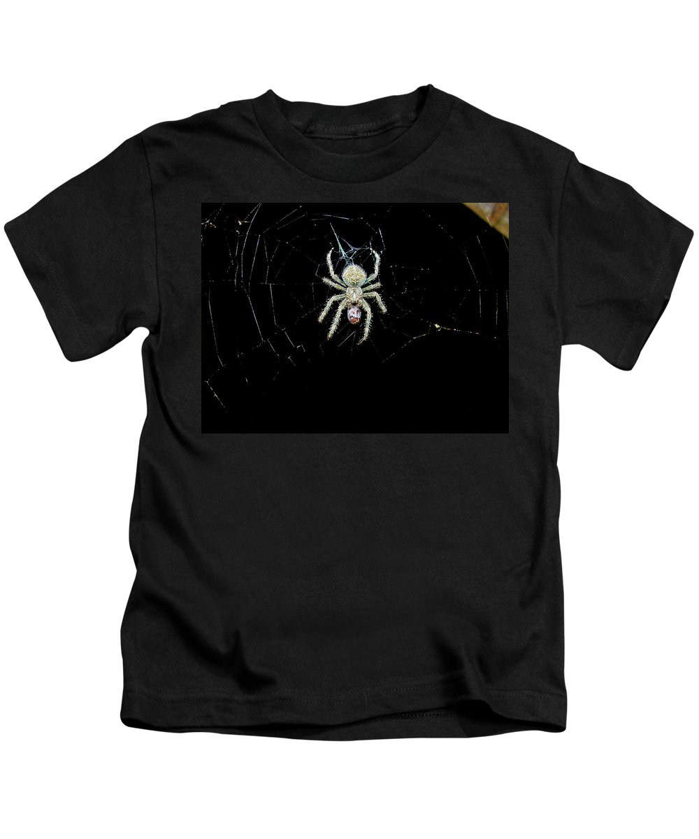 Spider Kids T-Shirt featuring the photograph The Spider by Sherman Perry