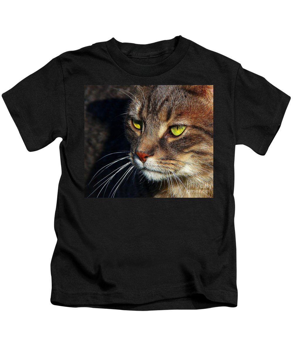 Cats Kids T-Shirt featuring the photograph The Watcher by Davandra Cribbie