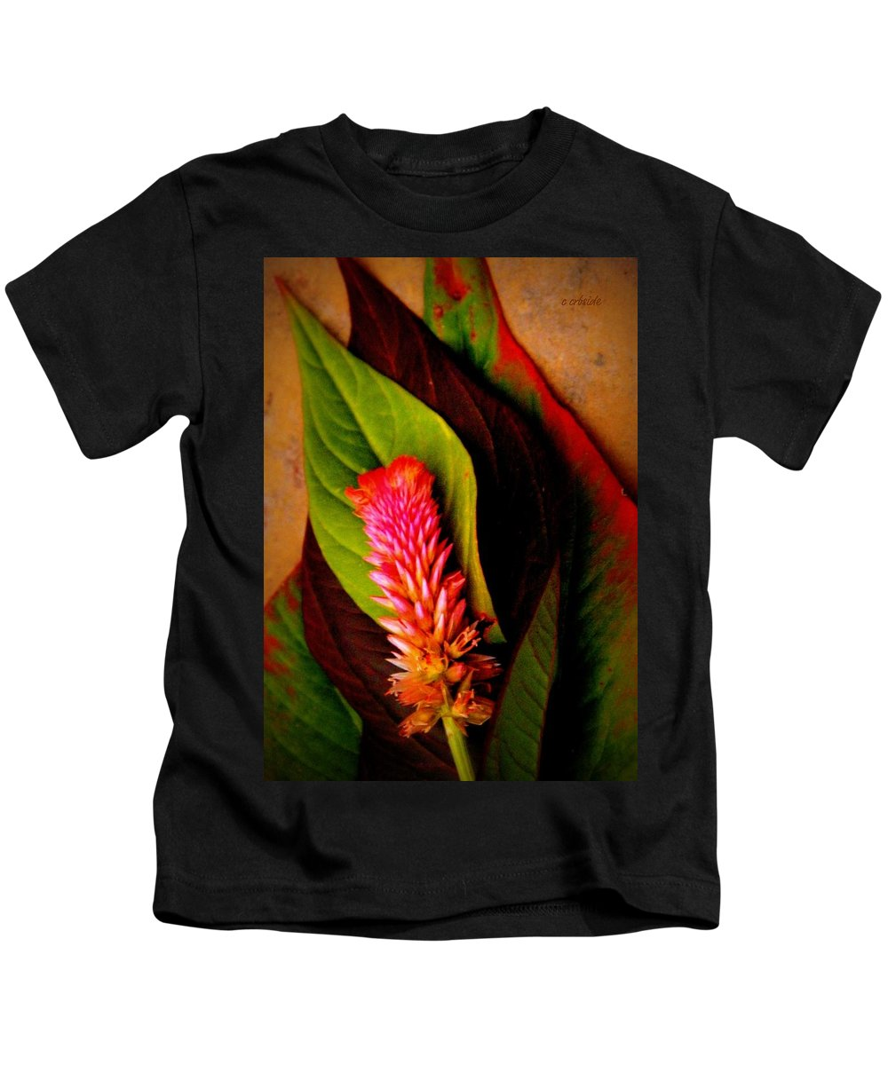Earthy Kids T-Shirt featuring the photograph Tiny Plume by Chris Berry