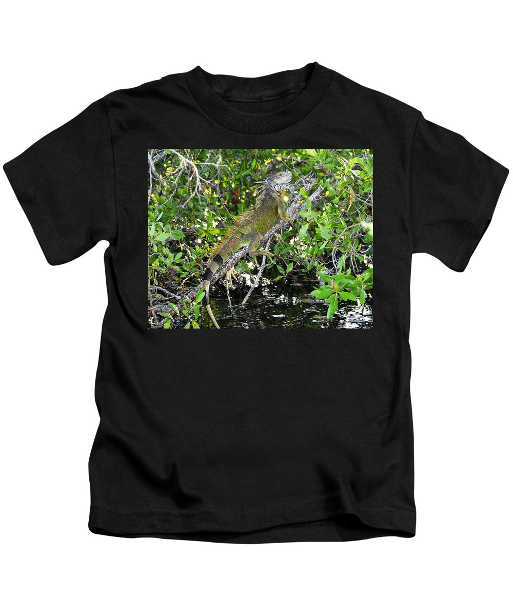 Wildlife Photography Kids T-Shirt featuring the photograph Tropical Iguana by David Lee Thompson