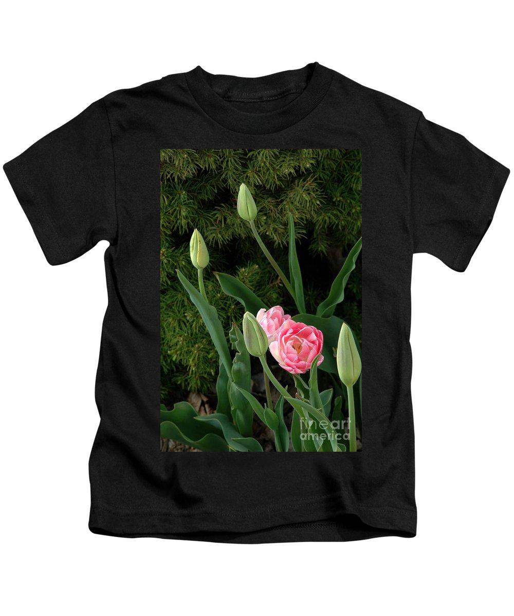 Tulips Kids T-Shirt featuring the photograph Tulips And Evergreen by Mike Nellums