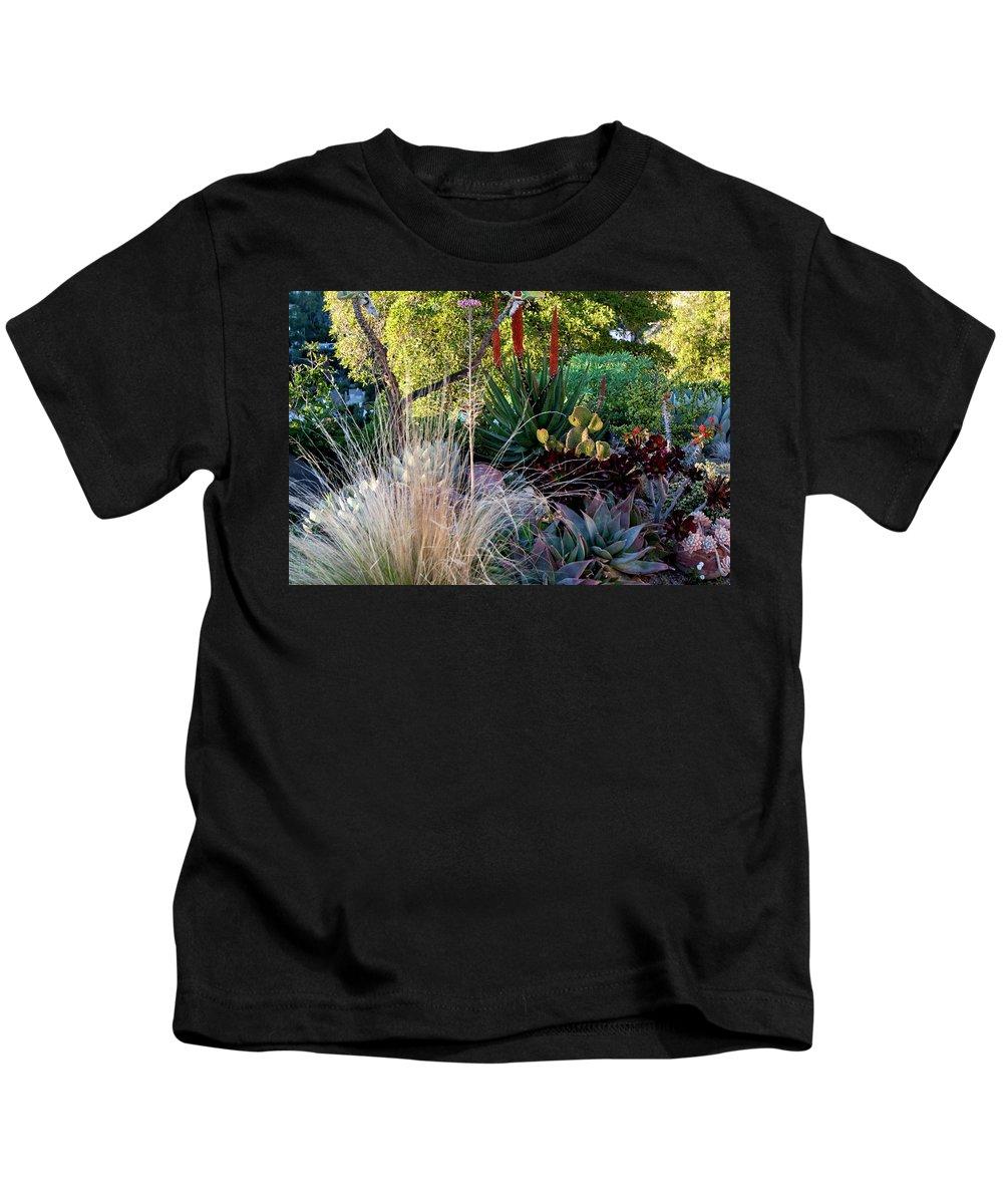 Golden Light Kids T-Shirt featuring the photograph Urban Garden With Cactus by Lorraine Devon Wilke