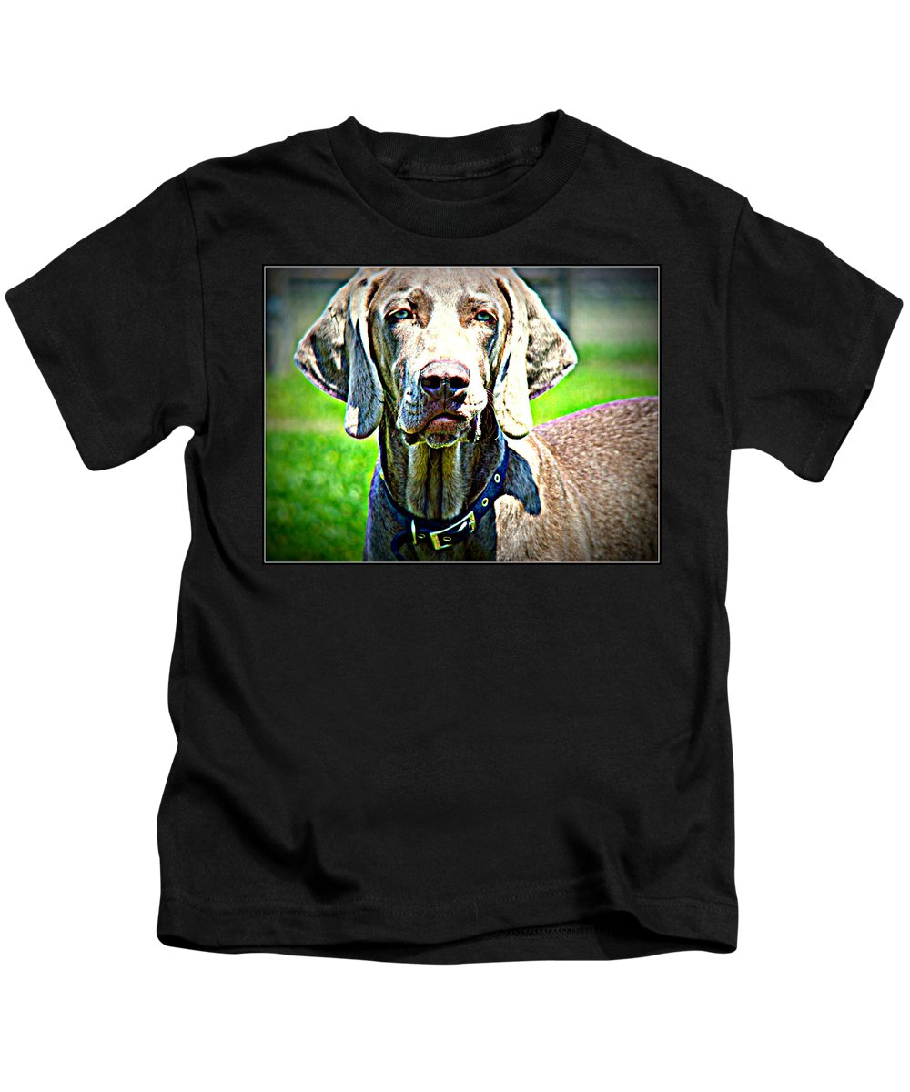 Dog Weimaraner Kids T-Shirt featuring the photograph Watchful Weimaraner by Alice Gipson