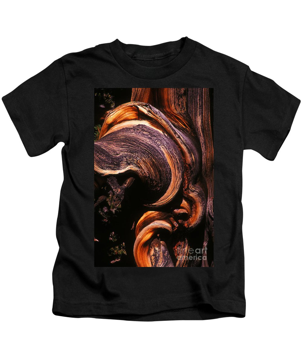 Bristlecone Kids T-Shirt featuring the photograph When The Oldest Living Things On Earth Die by Paul W Faust - Impressions of Light