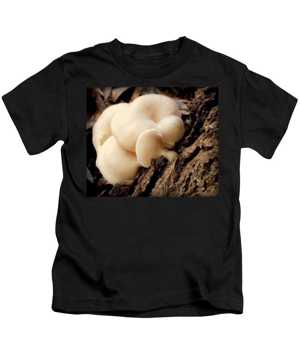Mushrooms Kids T-Shirt featuring the photograph White Cloud Mushrooms by Karen Wiles