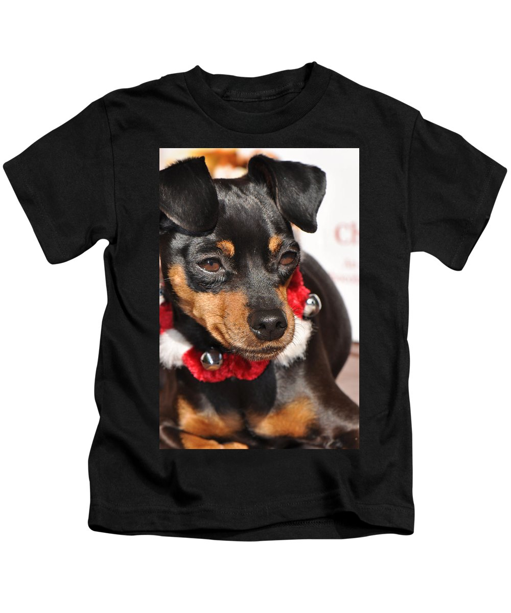 Dog Kids T-Shirt featuring the photograph With Bells On by Christine Stonebridge