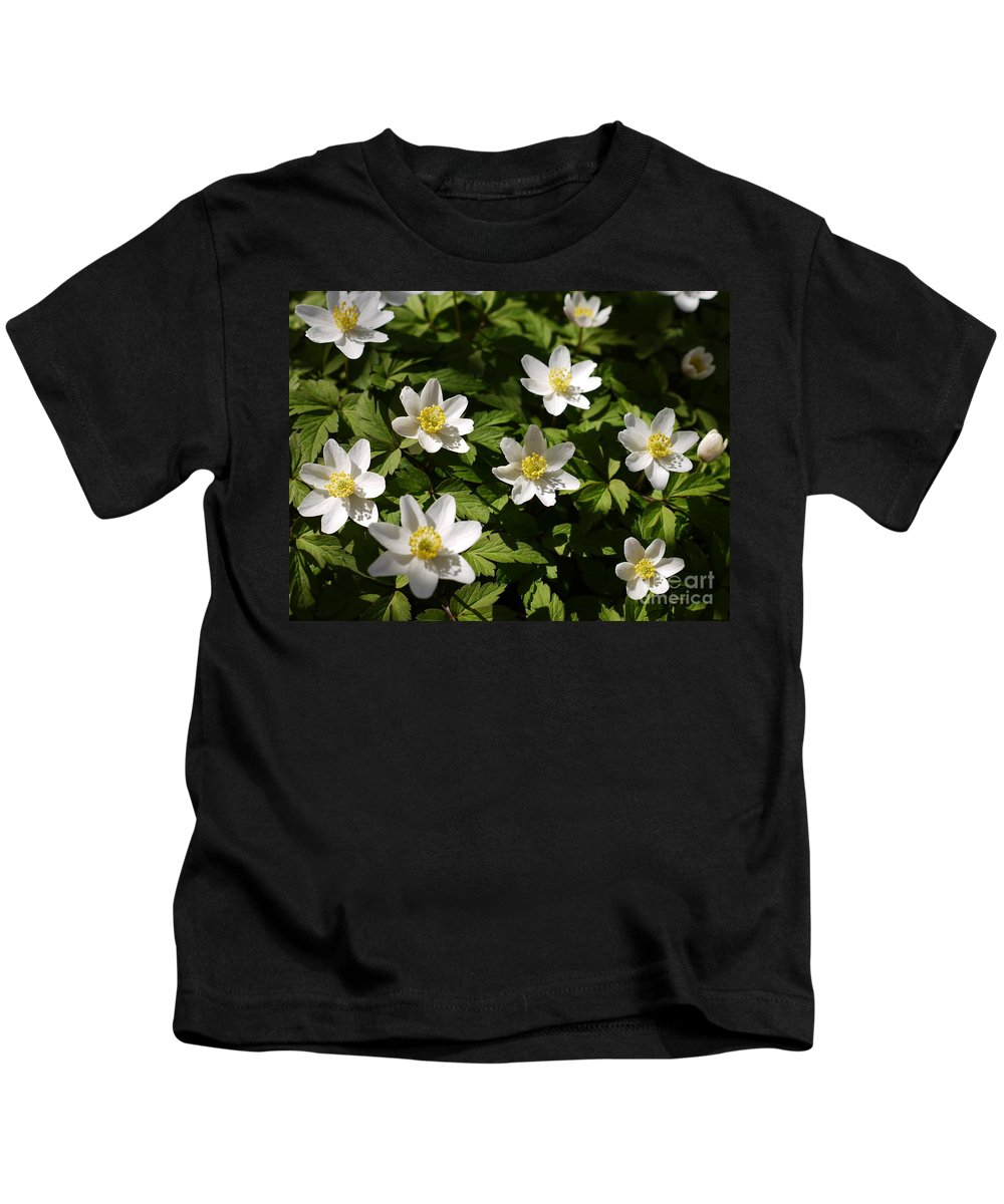 Wood Anemone Kids T-Shirt featuring the photograph Wood Anemone by John Chatterley