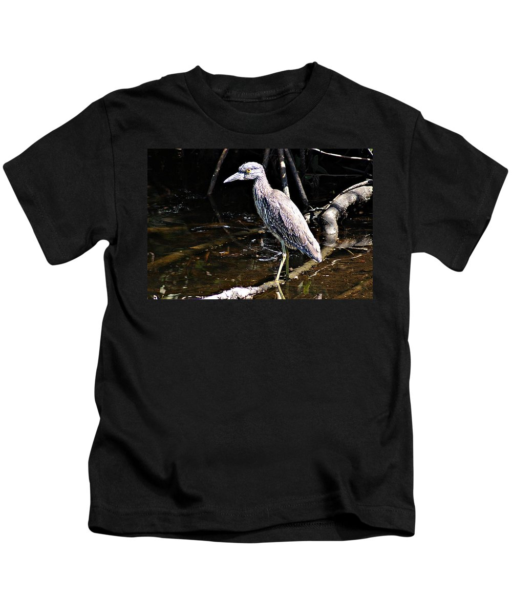 Yellow Crowned Night Heron Kids T-Shirt featuring the photograph Yellow Crowned Night Heron II by Joe Faherty