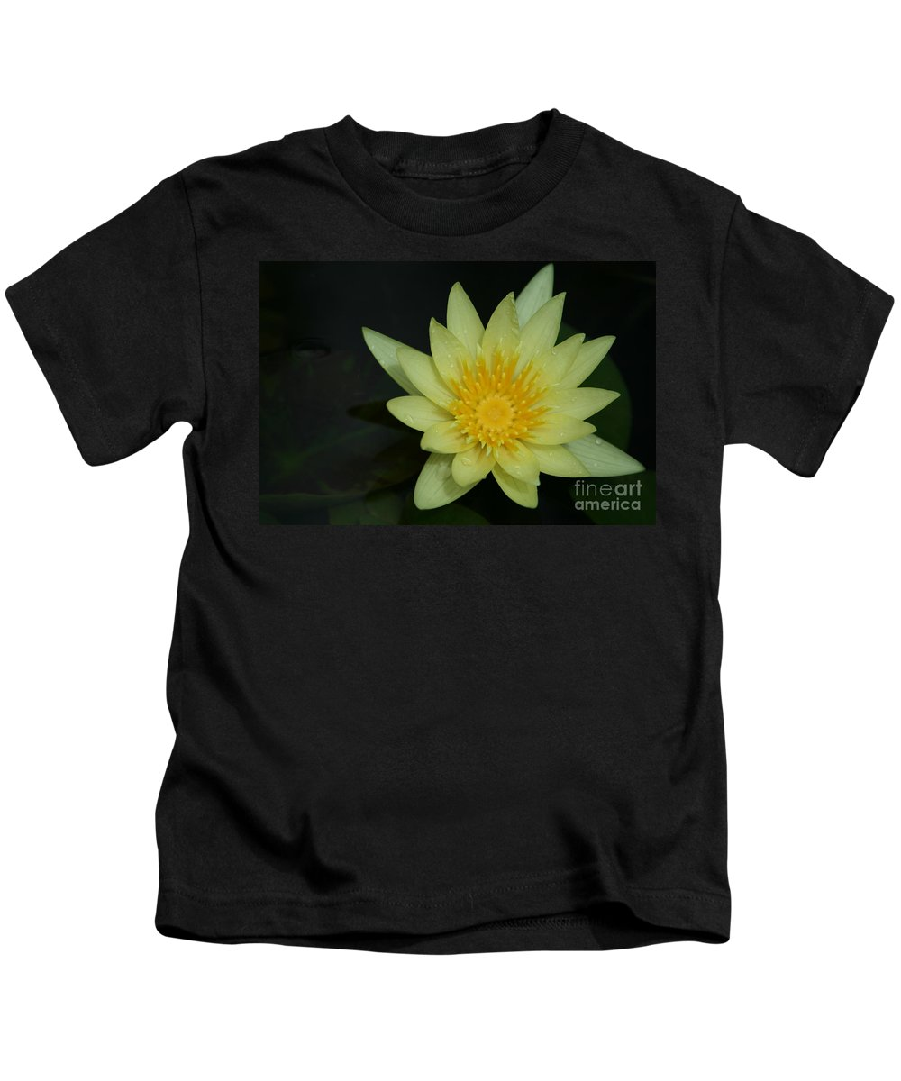 Aloha Kids T-Shirt featuring the photograph Yellow Waterlily - Nymphaea Mexicana - Hawaii by Sharon Mau
