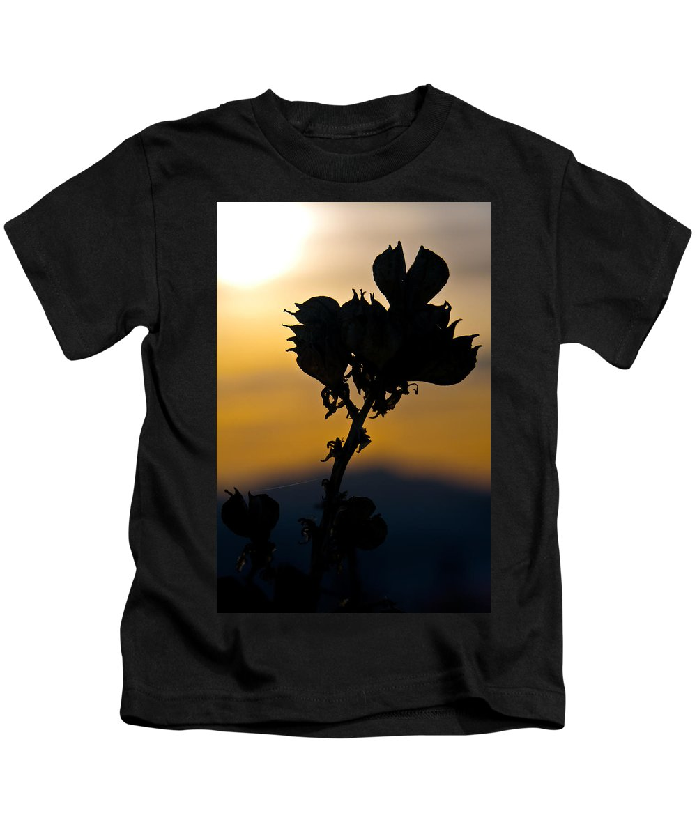 White Sands National Monument Kids T-Shirt featuring the photograph Yucca At Sunset by Ralf Kaiser