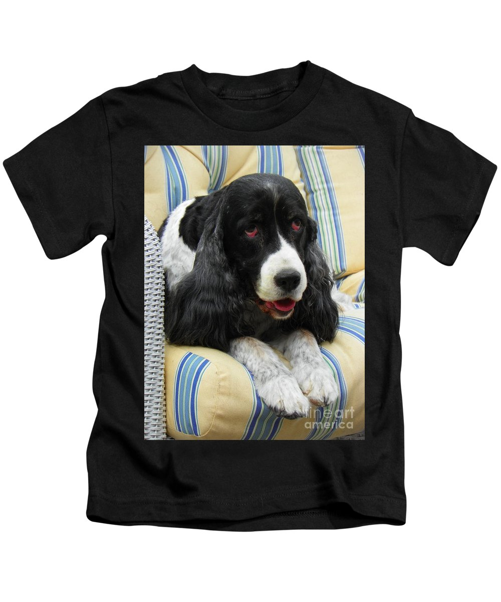 #940 D1031 Farmer Browns English Springer Spaniel Kids T-Shirt featuring the photograph #940 D1031 Farmer Browns Springer Spaniel by Robin Lee Mccarthy Photography