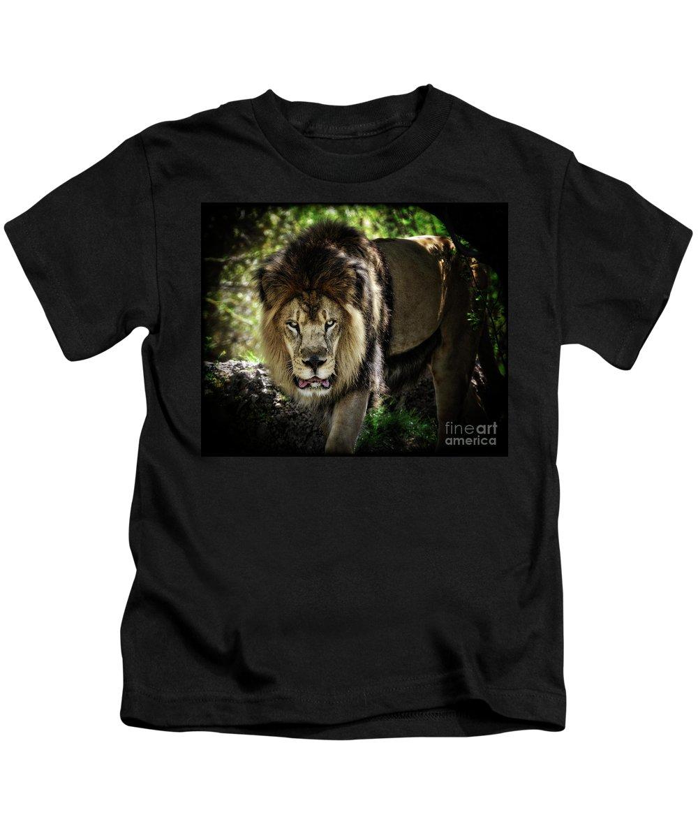 African Lion Kids T-Shirt featuring the photograph African Lion by Saija Lehtonen