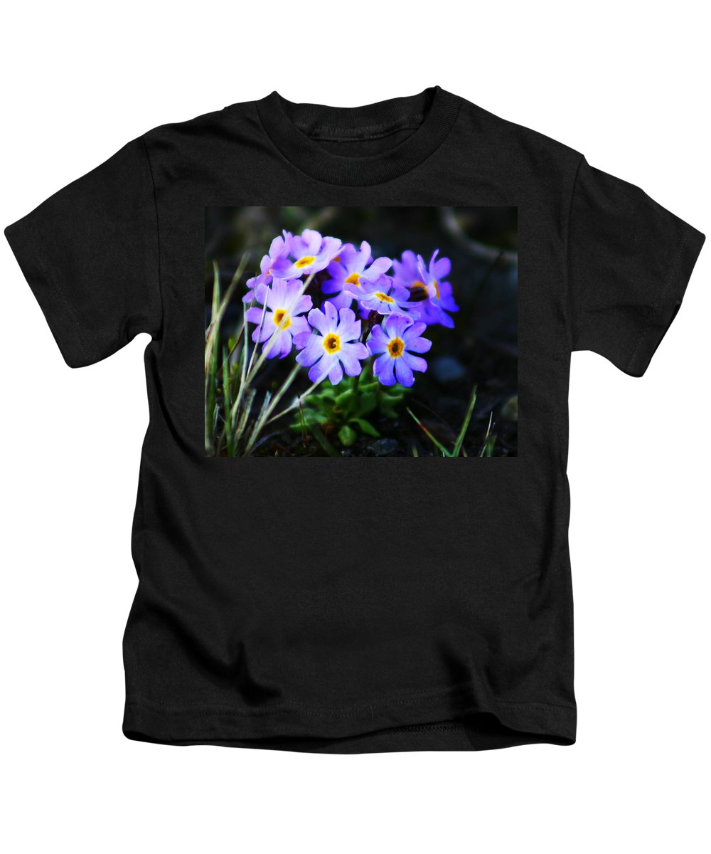 Flowers Kids T-Shirt featuring the photograph Alaskan Wild Flowers by Anthony Jones
