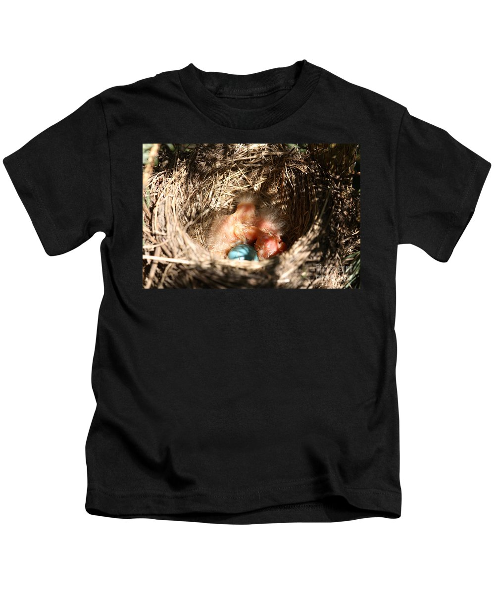 Robin Kids T-Shirt featuring the photograph American Robin Nestlings by Ted Kinsman