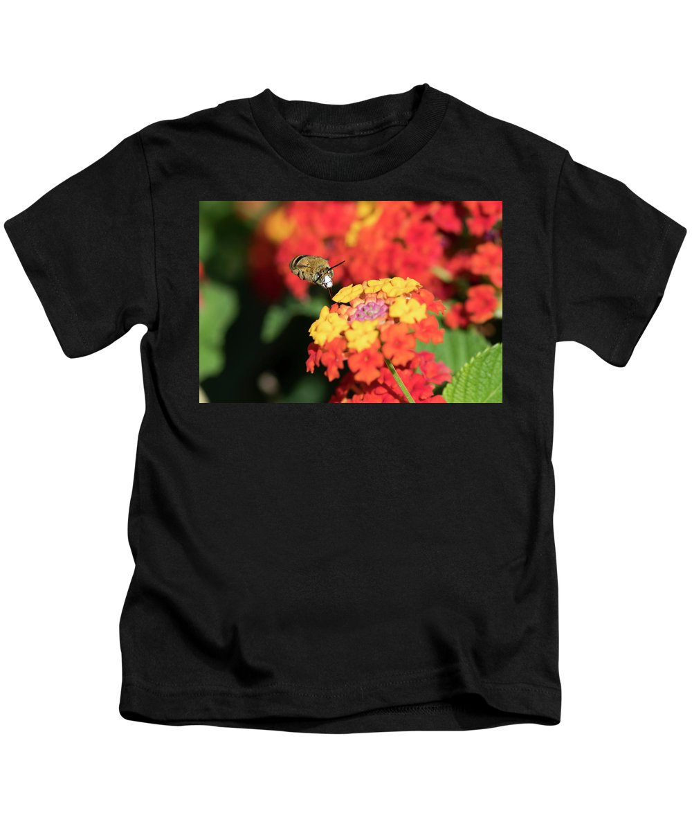Bee Kids T-Shirt featuring the photograph Bee, Bumblebee, Flying To A Flower, In Marseille, France by Sylvie CUCCHI