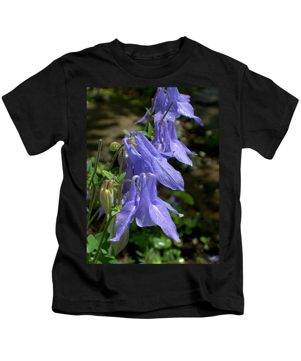 Columbine Kids T-Shirt featuring the photograph Columbine Surprise by Carolyn Jacob