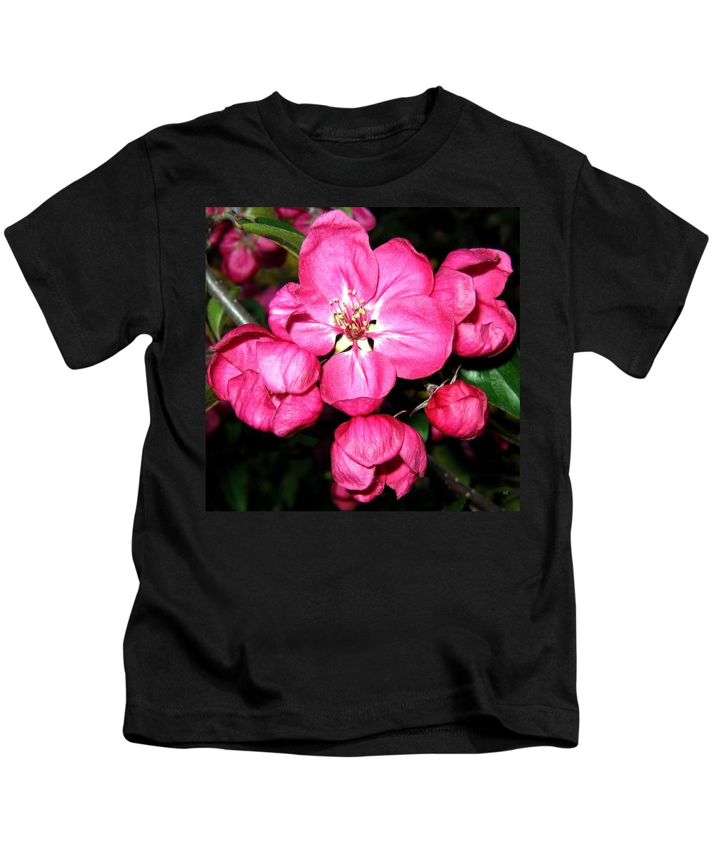 Blossoms Kids T-Shirt featuring the photograph Crab Apple Blossoms by Will Borden