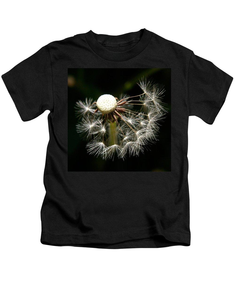 Dandelion Kids T-Shirt featuring the photograph Dandelion by Ralph A Ledergerber-Photography