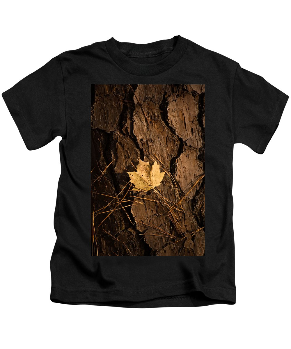 Leaf Kids T-Shirt featuring the photograph Fallen Leaf by Gary Adkins