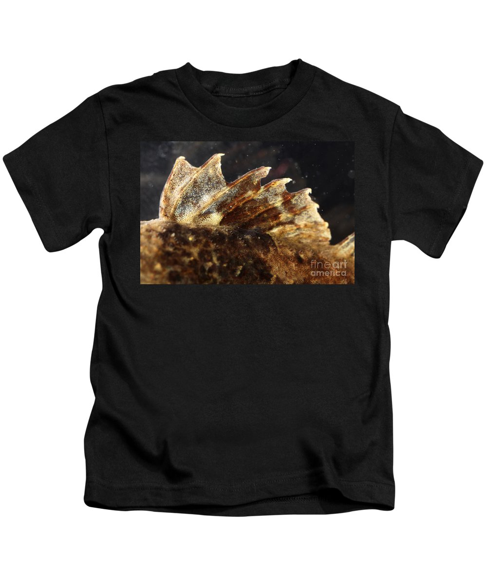 Sculpin Kids T-Shirt featuring the photograph Fin Of Shorthorn Sculpin by Ted Kinsman