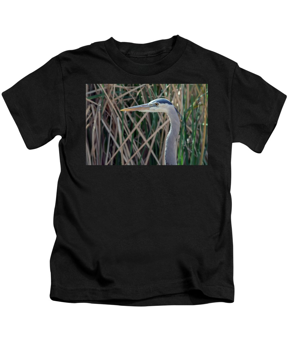 Great_blue_heron Kids T-Shirt featuring the photograph Great Blue Heron by Tam Ryan
