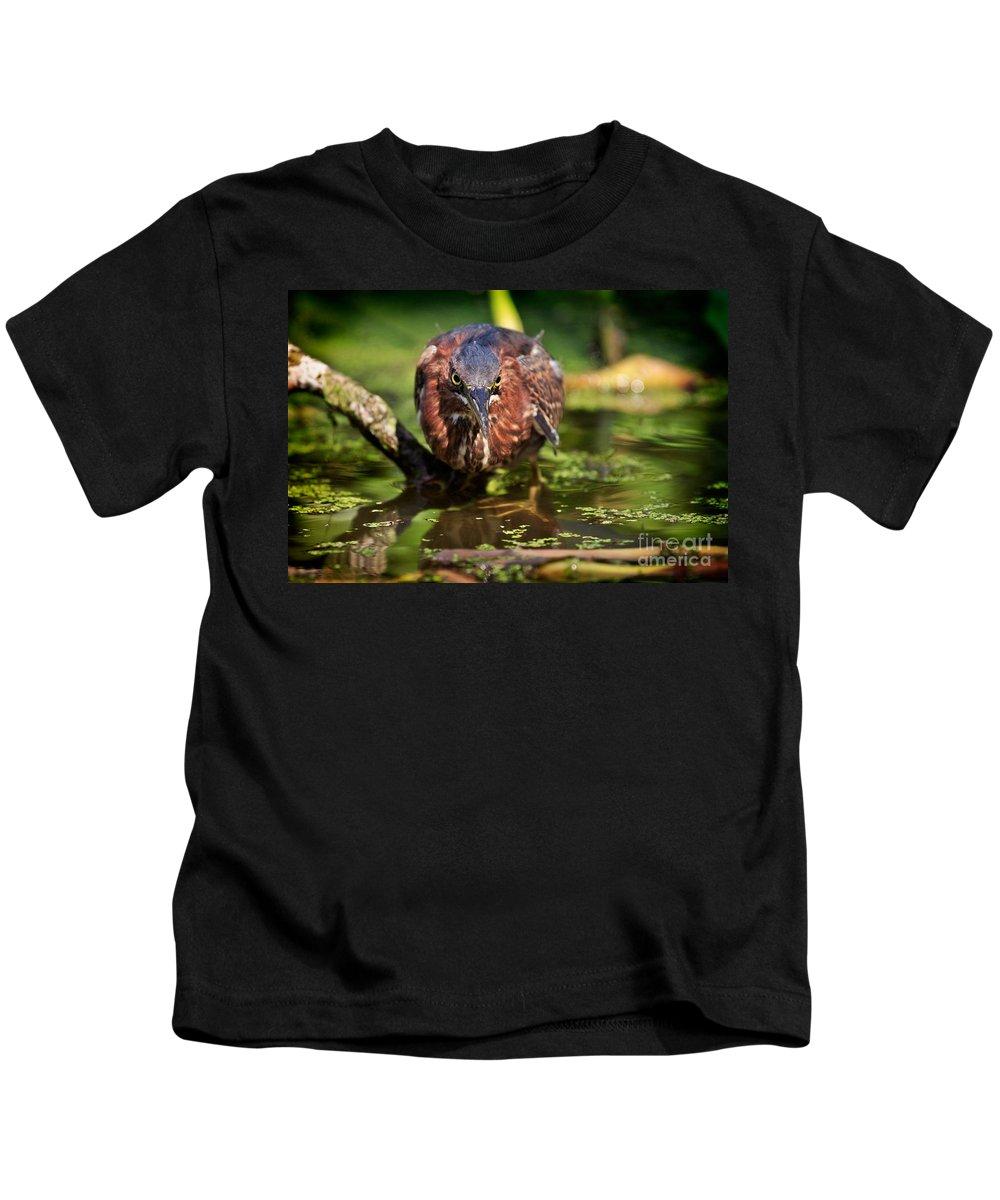 Green Heron Kids T-Shirt featuring the photograph Green Heron by Matt Suess