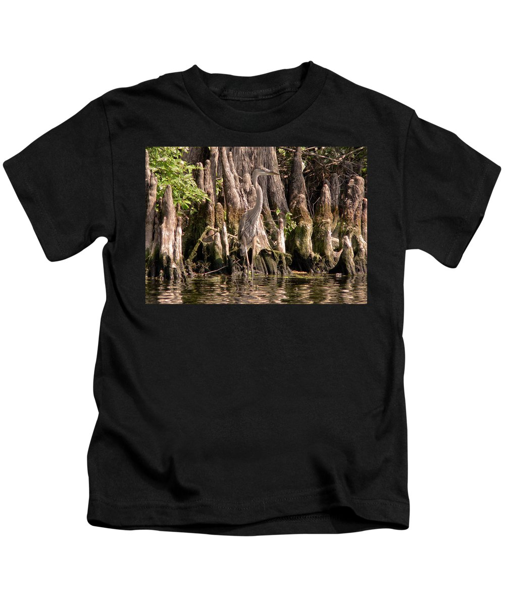 Great Blue Heron Kids T-Shirt featuring the photograph Heron and Cypress Knees by Steven Sparks