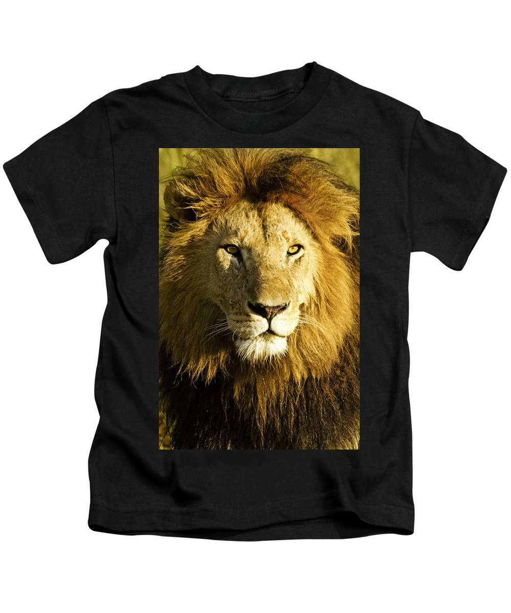 Lion Kids T-Shirt featuring the photograph His Royal Highness by Michele Burgess