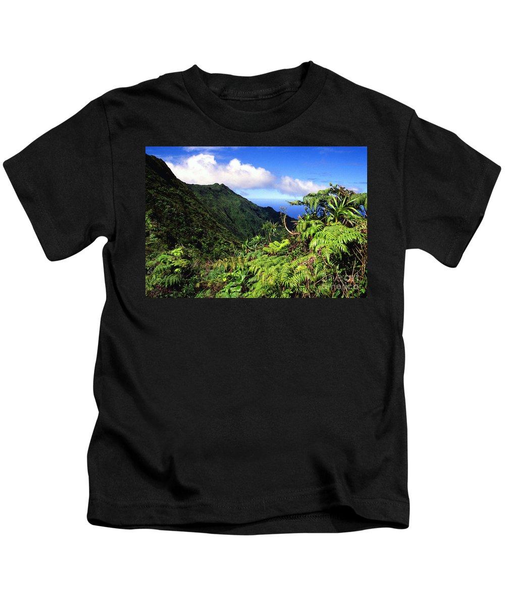Hapu Tree Ferns Kids T-Shirt featuring the photograph Koolau Summit Trail by Thomas R Fletcher