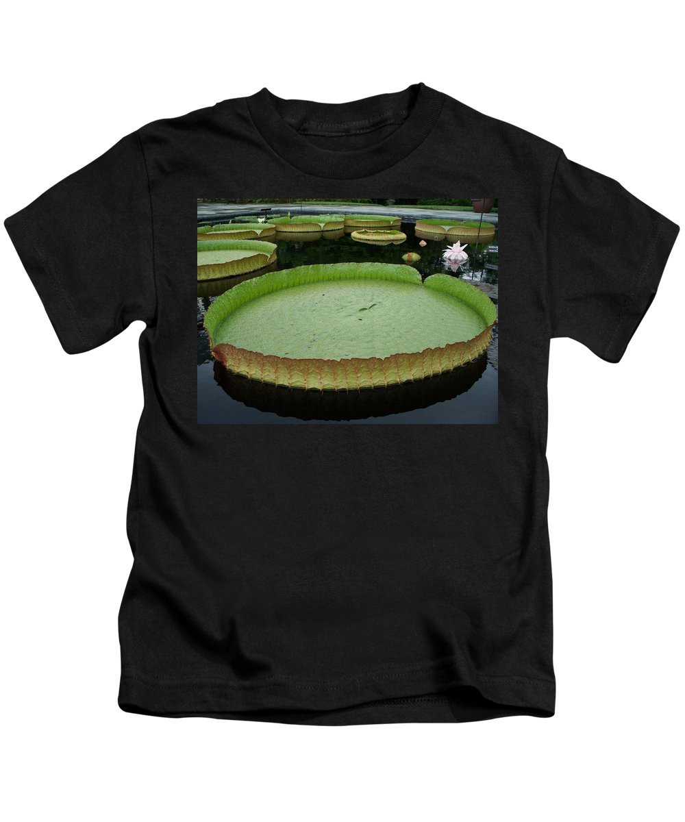 Lily Kids T-Shirt featuring the painting Lily Pads by Eric Schiabor