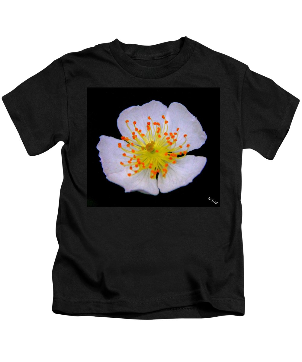 Orange Tips Kids T-Shirt featuring the photograph Orange Tips by Ed Smith