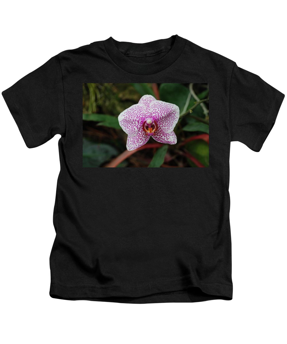 Pink Kids T-Shirt featuring the photograph Orchid by Rob Hans