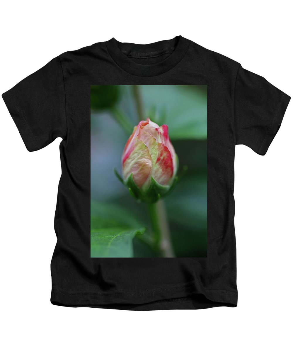 Rose Of Sharon Kids T-Shirt featuring the photograph Part Of A Bigger Plan by Michiale Schneider
