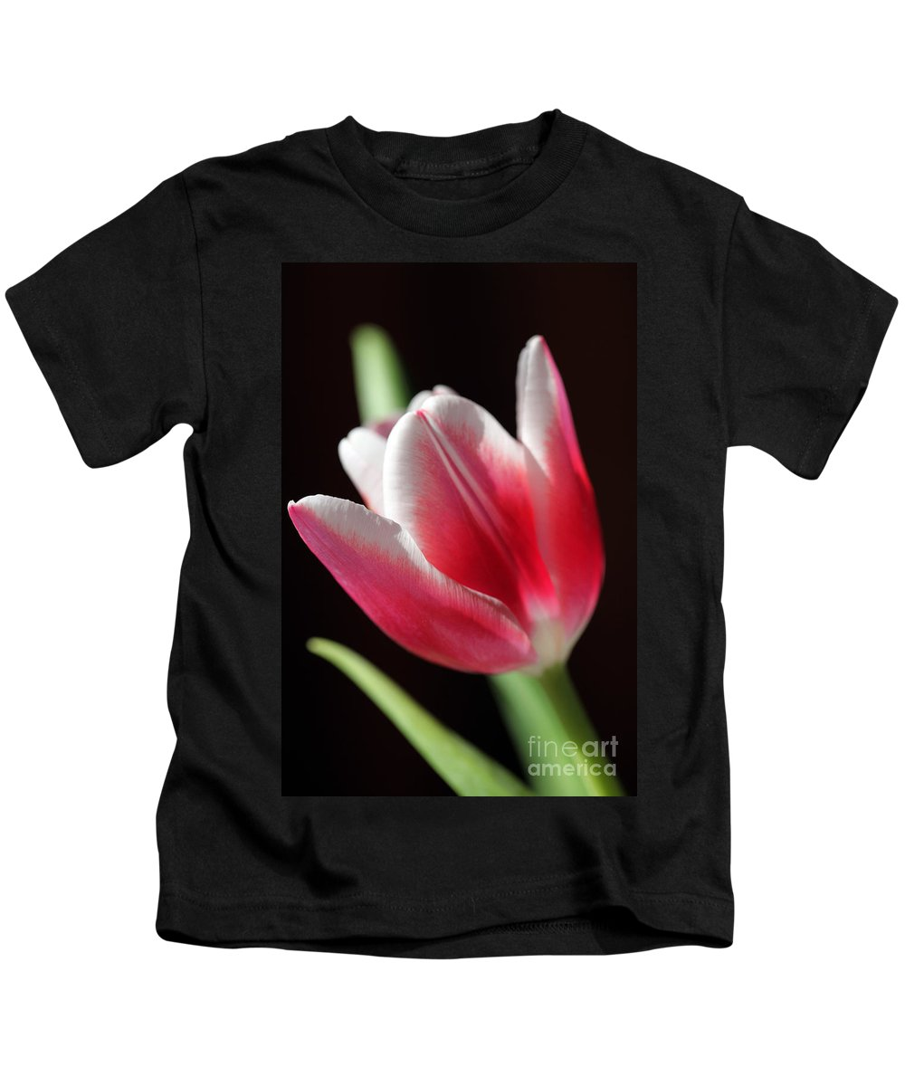 Tulips Kids T-Shirt featuring the photograph Peaceful by Amanda Barcon