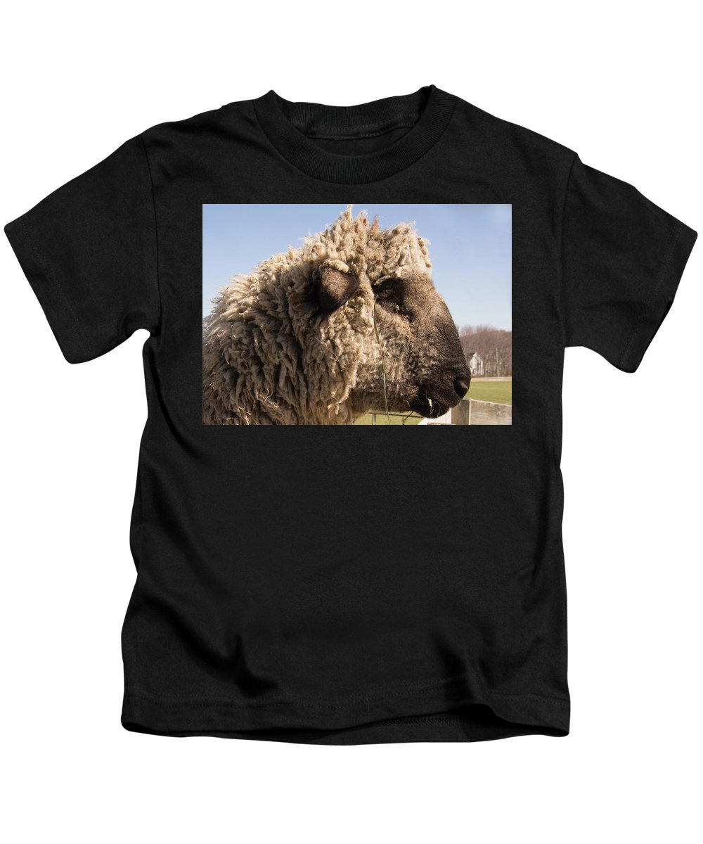 Sheep Kids T-Shirt featuring the photograph Sheep In Profile by Diane Schuler