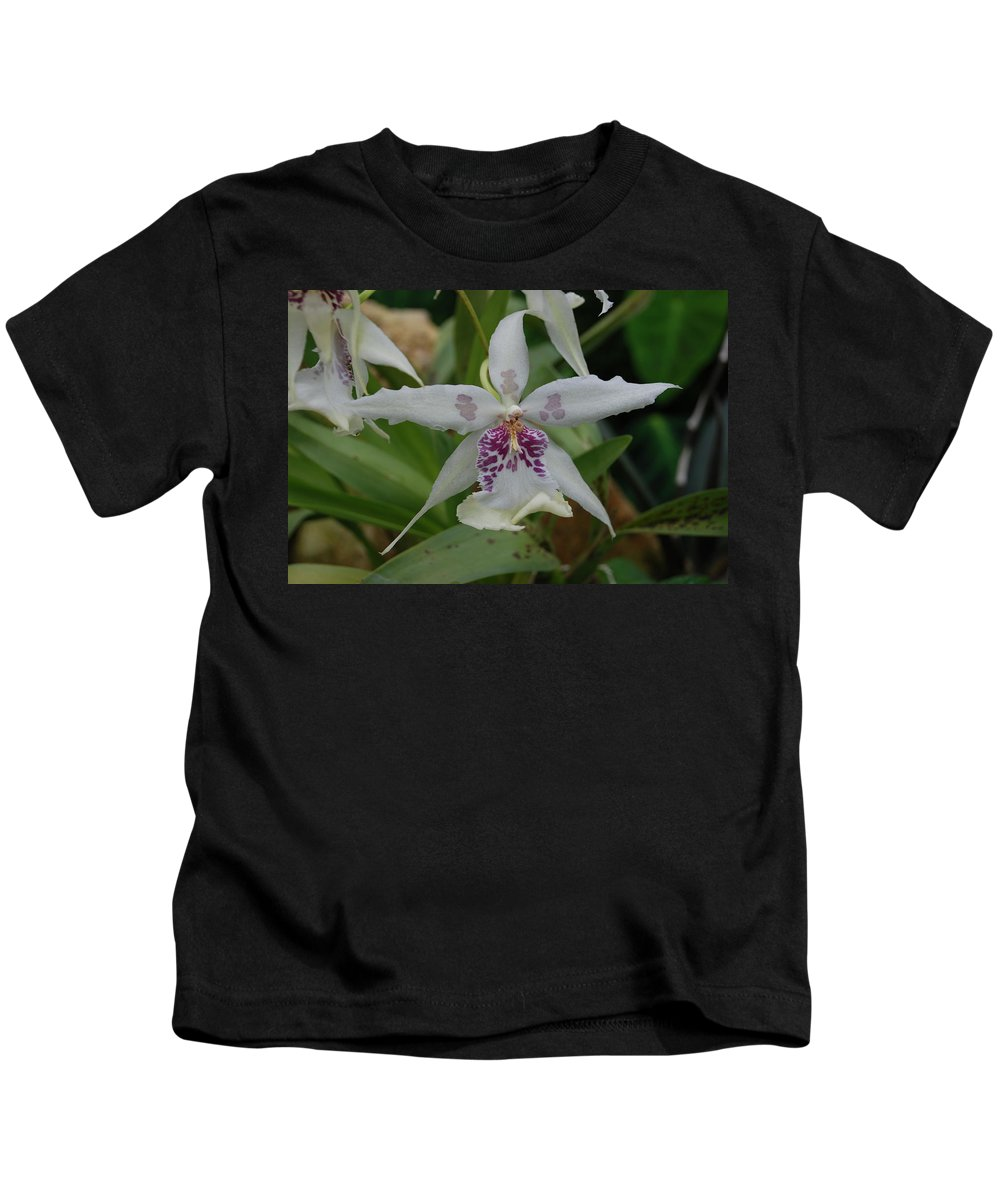 Macro Kids T-Shirt featuring the photograph Star Flower by Rob Hans